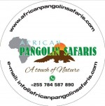 African Pangolin Safaris